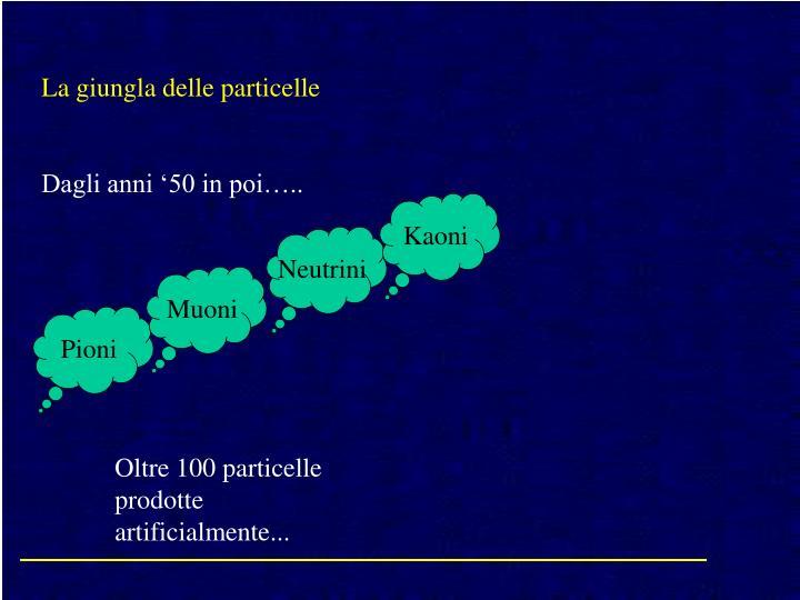La giungla delle particelle