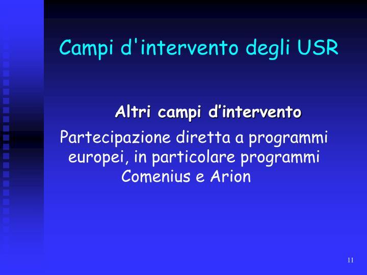 Campi d'intervento degli USR