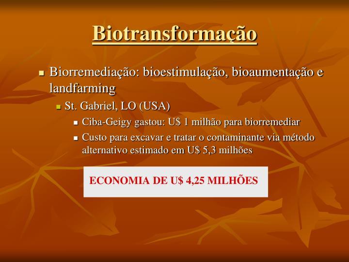Biorremediação: bioestimulação, bioaumentação e landfarming