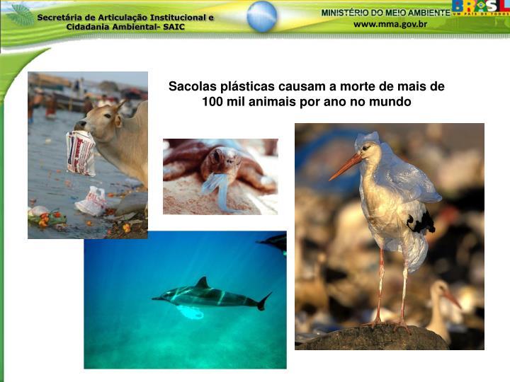 Sacolas plásticas causam a morte de mais de 100 mil animais por ano no mundo