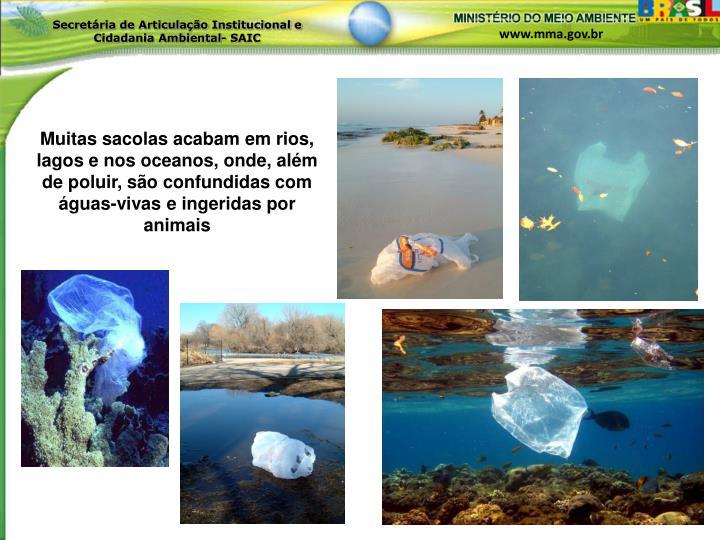 Muitas sacolas acabam em rios, lagos e nos oceanos, onde, além de poluir, são confundidas com águas-vivas e ingeridas por animais