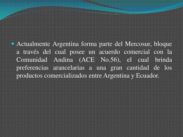 Actualmente Argentina forma parte del Mercosur, bloque a través del cual posee un acuerdo comercial con la Comunidad Andina (ACE No.56), el cual brinda preferencias arancelarias a una gran cantidad de los productos comercializados entre Argentina y Ecuador.