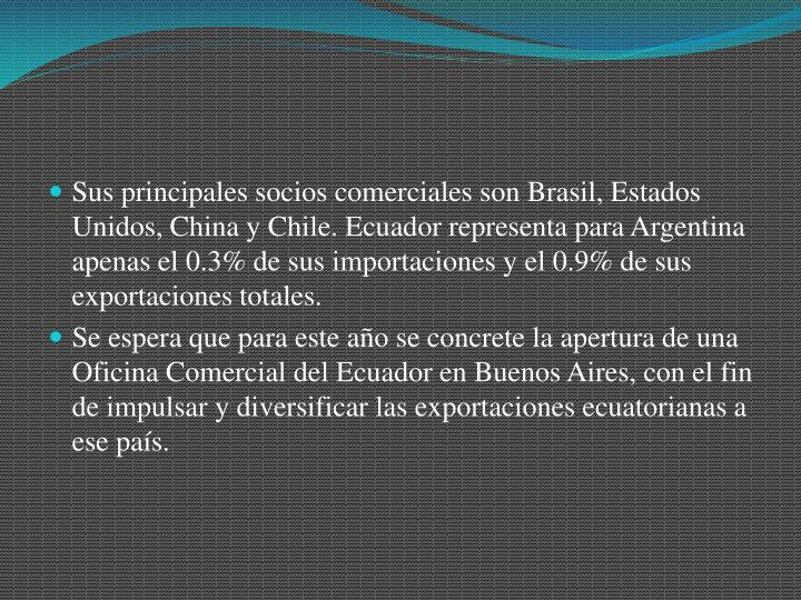 Sus principales socios comerciales son Brasil, Estados Unidos, China y Chile. Ecuador representa para Argentina apenas el 0.3% de sus importaciones y el 0.9% de sus exportaciones totales.