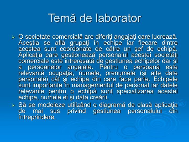 Temă de laborator