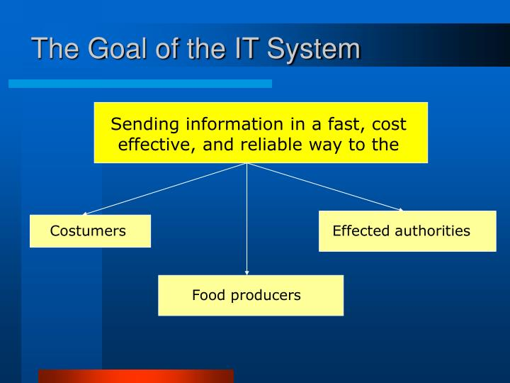 The Goal of the IT System