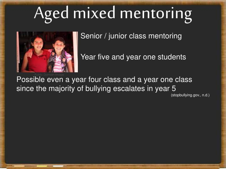 Aged mixed mentoring