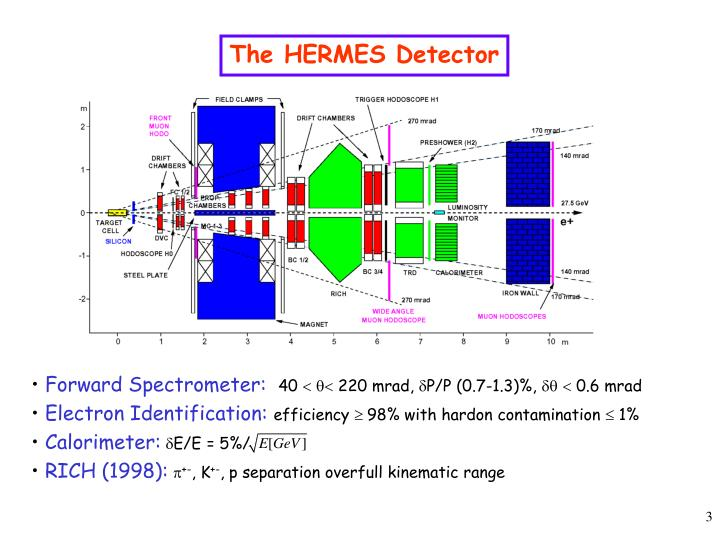 The HERMES Detector