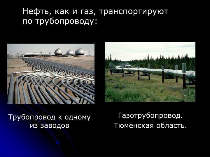Нефть, как и газ, транспортируют по трубопроводу: