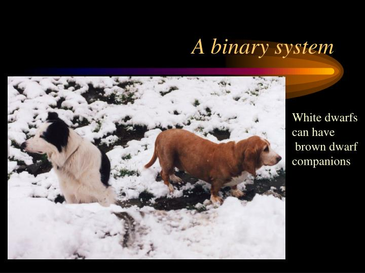 A binary system