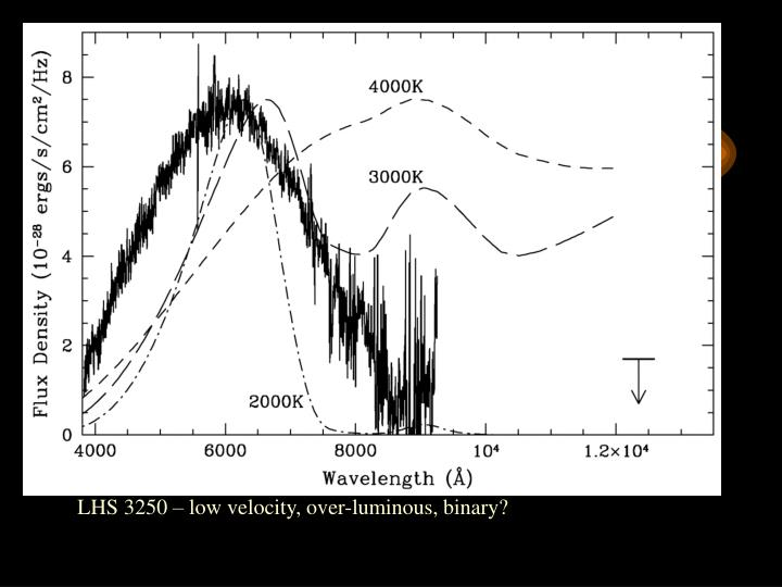 Finding heavy halo WDs: II