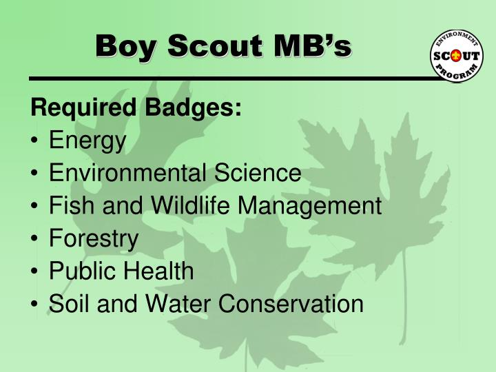 Boy Scout MB's