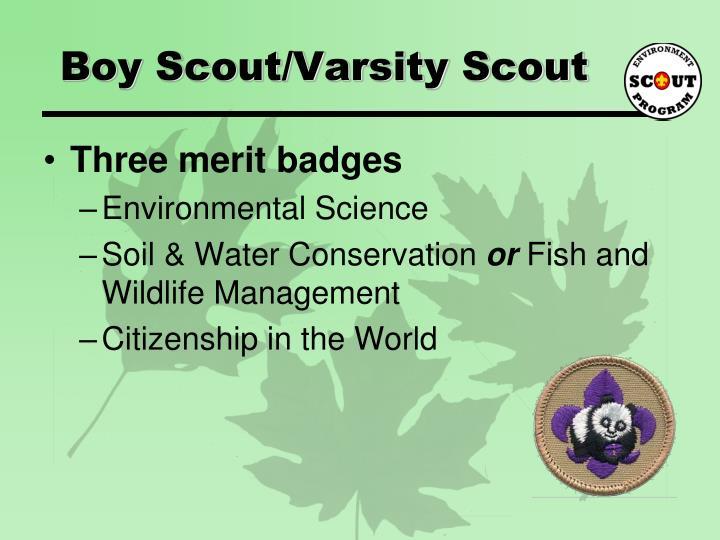 Boy Scout/Varsity Scout