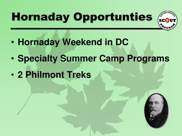 Hornaday Opportunties