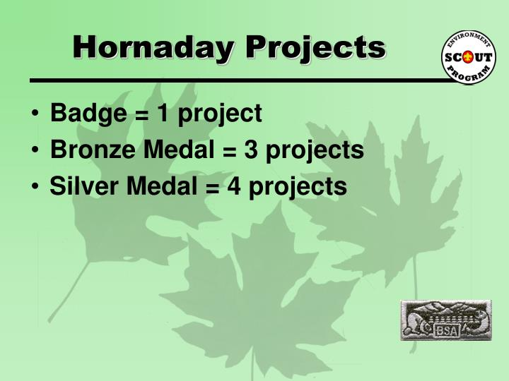 Hornaday Projects