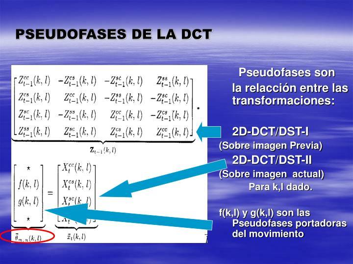 PSEUDOFASES DE LA DCT