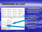 pseudofases de la dct1