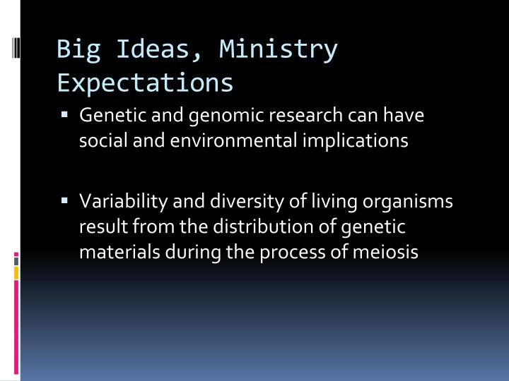 Big Ideas, Ministry Expectations