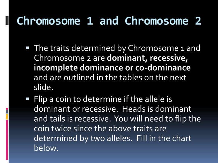 Chromosome 1 and Chromosome 2