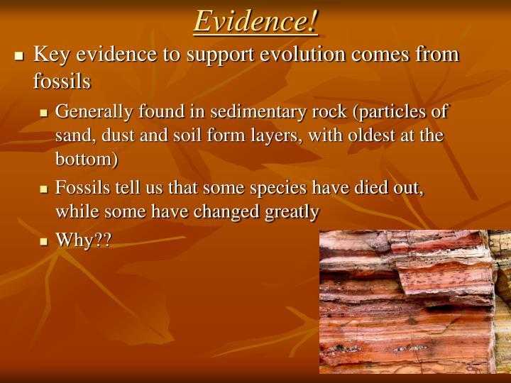 Evidence!