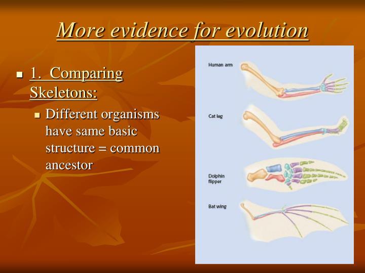 More evidence for evolution