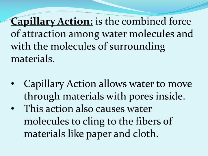 Capillary Action: