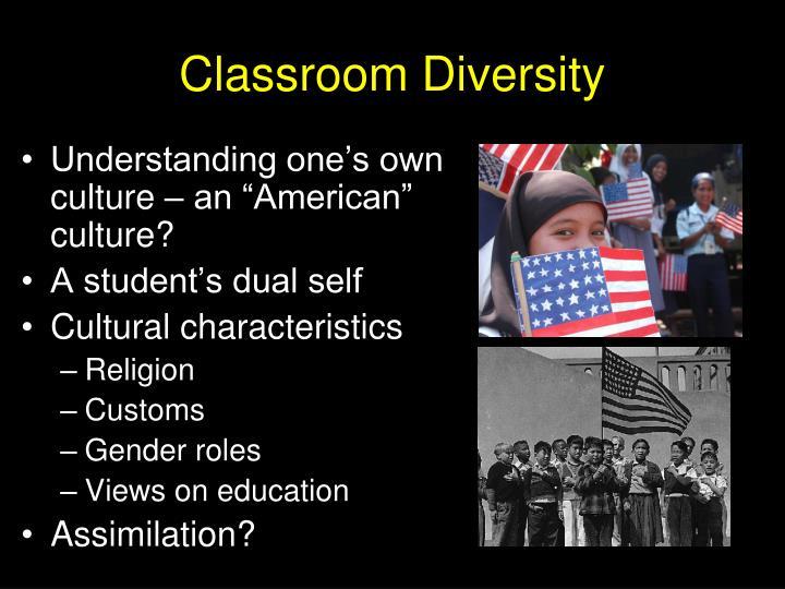 Classroom Diversity