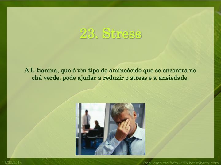 23. Stress