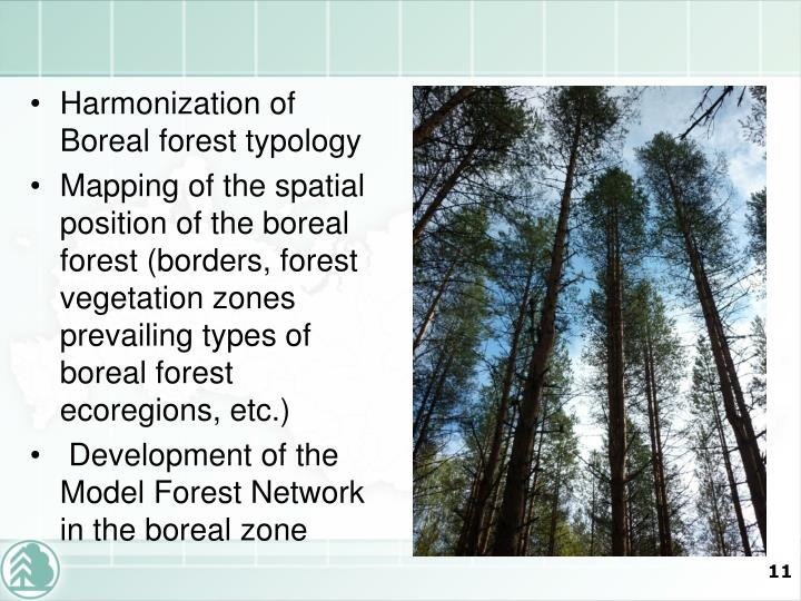 Harmonization of Boreal forest typology