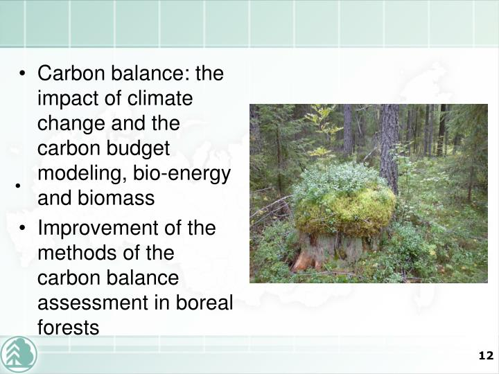 Carbon balance: the impact of climate change and the carbon budget modeling, bio-energy and biomass