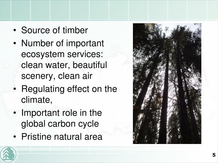 Source of timber