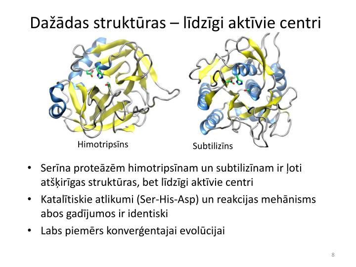 Dažādas struktūras – līdzīgi aktīvie centri