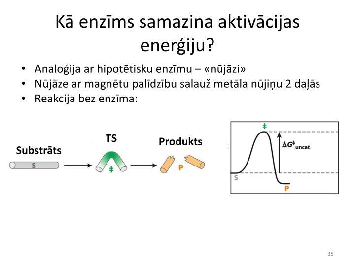 Kā enzīms samazina aktivācijas enerģiju?