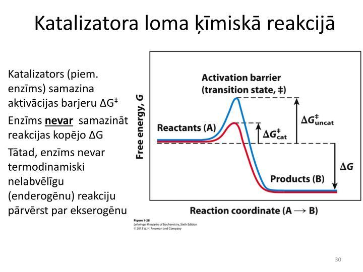 Katalizatora loma ķīmiskā reakcijā