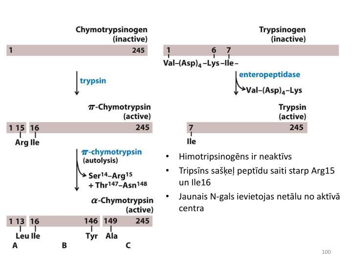 Himotripsinogēns