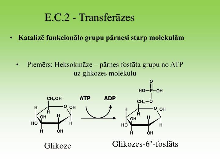E.C.2