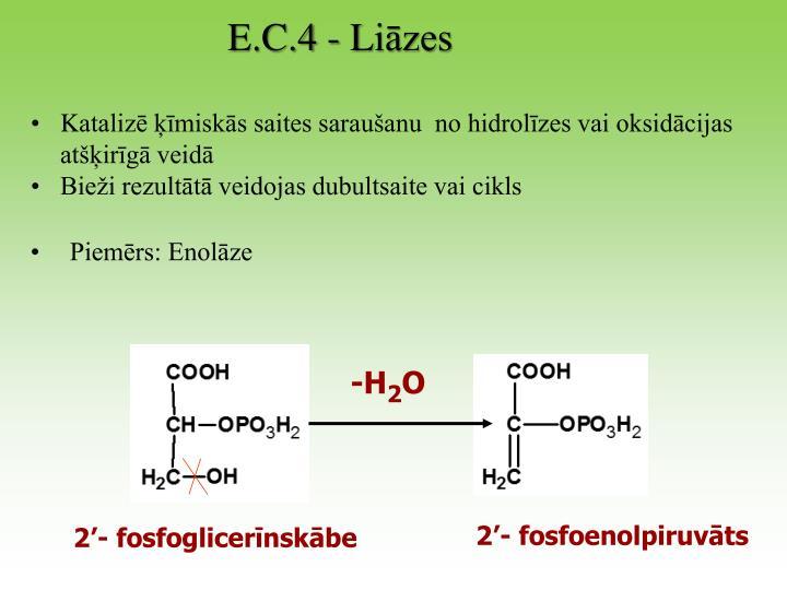 E.C.4