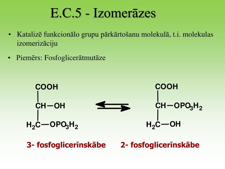 E.C.5