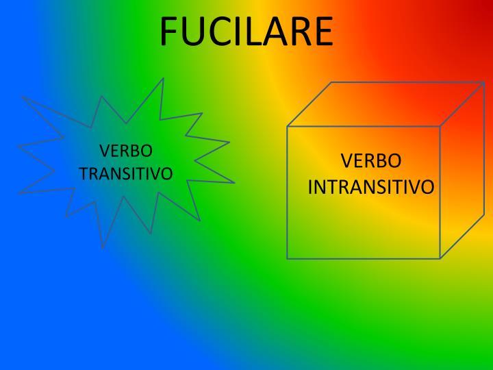 FUCILARE