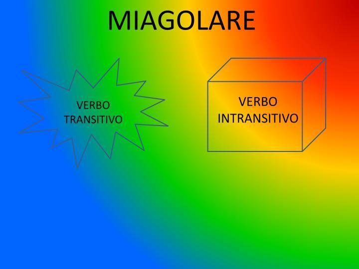 MIAGOLARE