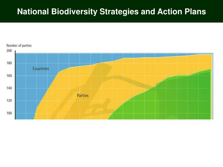 National biodiversity strategy and action plan kenya