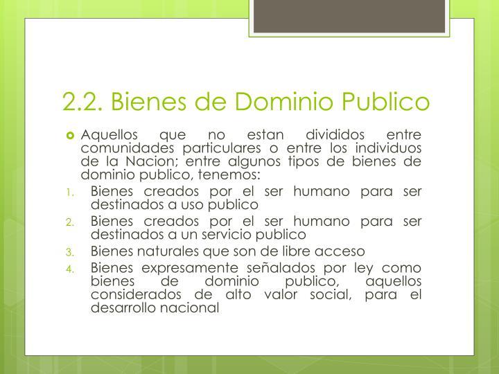 2.2. Bienes de Dominio Publico