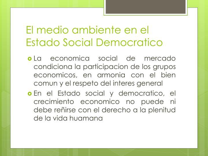 El medio ambiente en el Estado Social