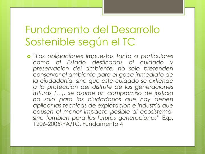 Fundamento del Desarrollo Sostenible según el TC