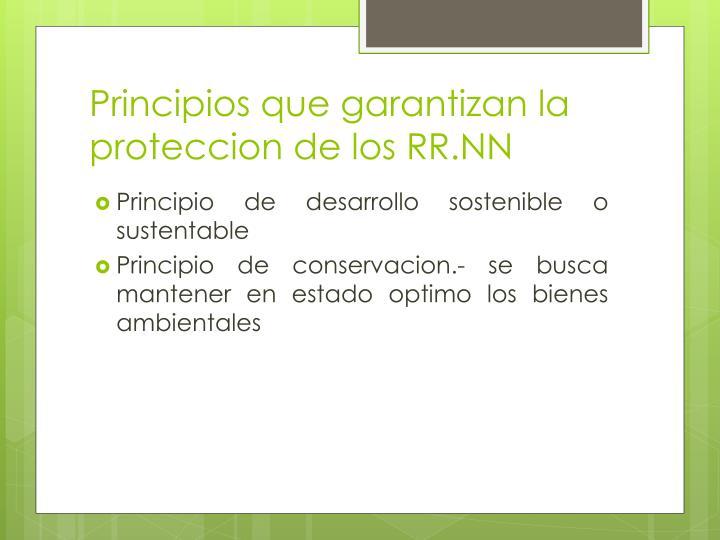 Principios que garantizan la