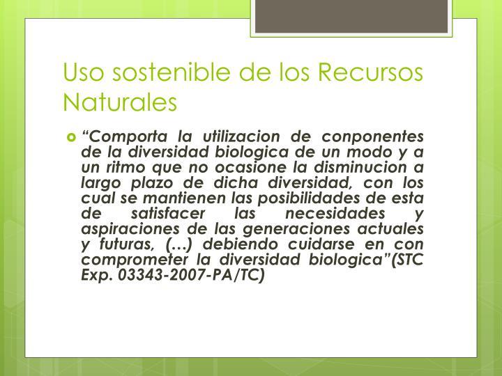 Uso sostenible de los Recursos Naturales