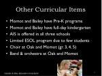 other curricular items