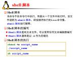 shell6