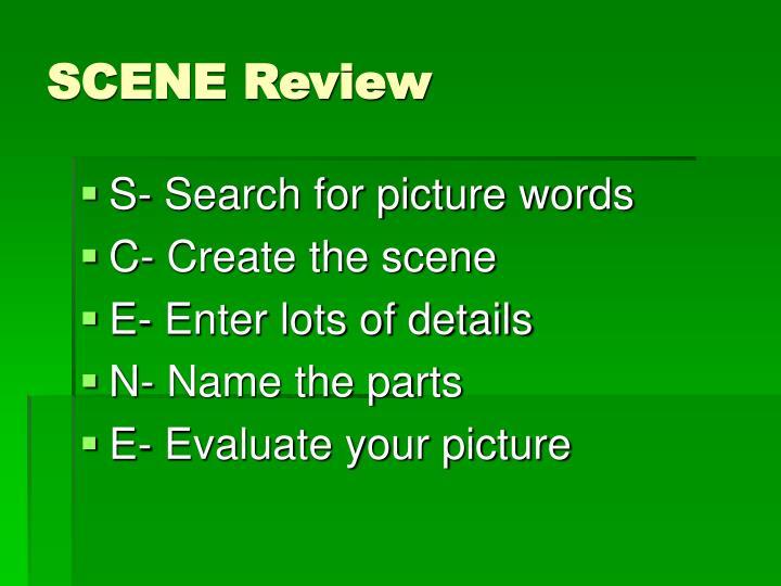 SCENE Review