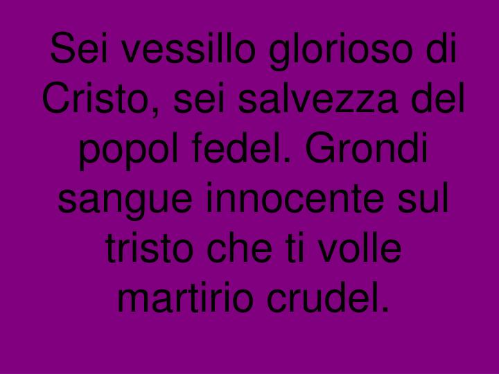 Sei vessillo glorioso di Cristo, sei salvezza del popol fedel. Grondi sangue innocente sul tristo che ti volle martirio crudel.