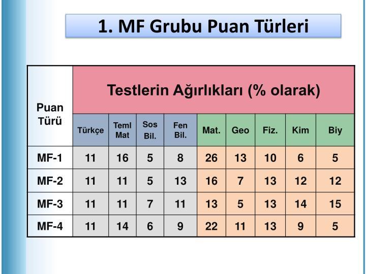 1. MF Grubu Puan Türleri